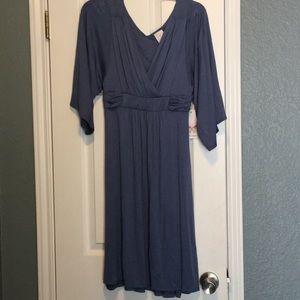 Powder Blue Ella Moss Dress